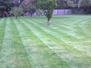 Gardeners In Kent